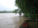 Der Rhein bei Hochwasser_1