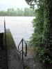 Der Rhein bei Hochwasser_2