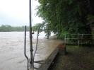 Der Rhein bei Hochwasser_4